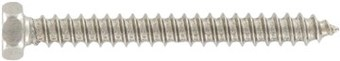 SST Slotted hexagon head Tapping screws