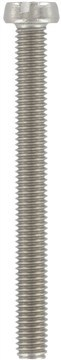 SST Slotted cheese head screws