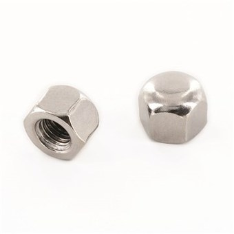 SST Hexagon cap Nuts